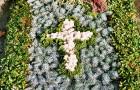 Herz, Kreuz, Sonne oder weitere Formen als Grabgestaltung