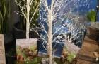 Birkenbaum beleuchtet